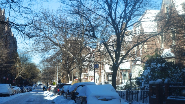 Jackson Heights, first snow 2014